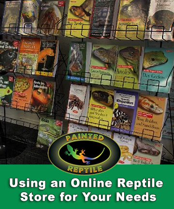 Using an Online Reptile Store for Your Needs